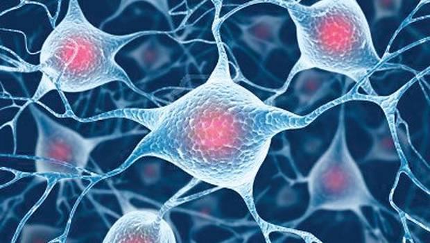 Medicina regenerativa con células madre